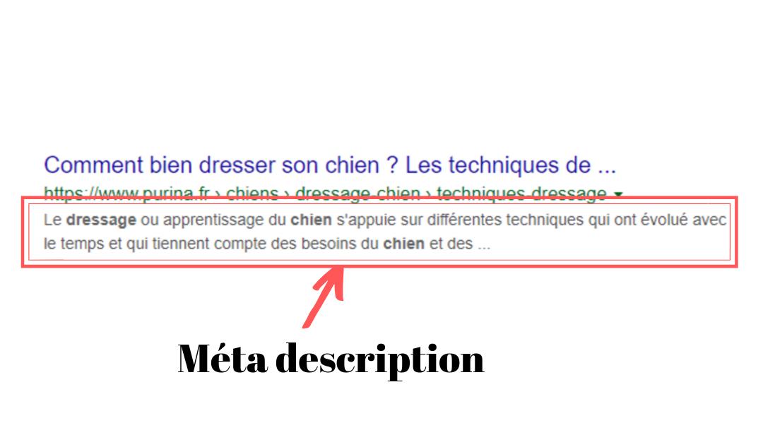 Exxemple de métadescription (article SEO)